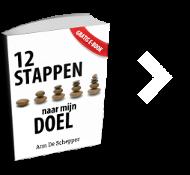 12 stappen naar mijn doel ebook ann de schepper