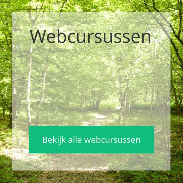 Ann De Schepper - Webcursussen